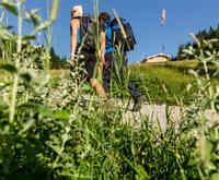 Wandertour in den Ammergauer Alpen